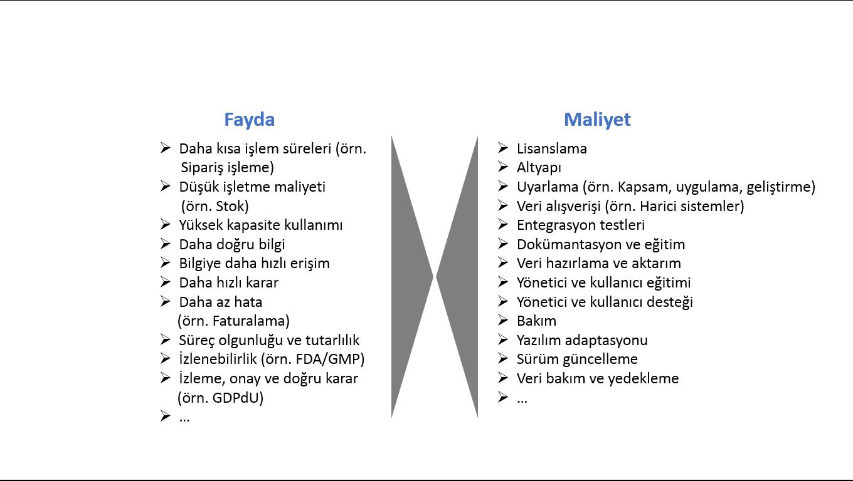 ERP_fayda_maliyet