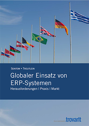 erp-global-einsetzen