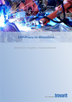 ERP-Praxis im Mittelstand