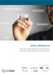 bitkom-studie_ecm-im-mittel